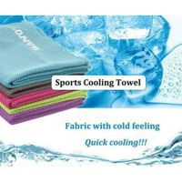 Sports Cooling Cold Summer Sweat Absorbent Towel(Random Color)