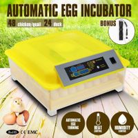 Automatic Egg Incubator with LED Display Panel