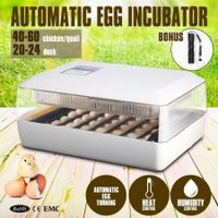 Automatic Egg Incubator with High Accuracy LED Temperature Display