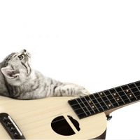 Populele S2 LED Bluetooth USB Smart Ukulele Toy Gift for Beginners