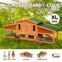 Petscene Backyard Wooden Chicken Coops Hen Rabbit Guinea Pigs House Hutch