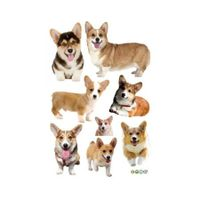 3D Wall Stickers Dogs PVC Self Adhesive Removable DIY Decoration Corgi