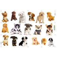 3D Wall Stickers Dogs PVC Self Adhesive Removable DIY Decoration mixed collections