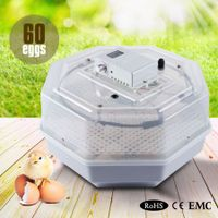 60 Poultry Egg Electronic Incubator