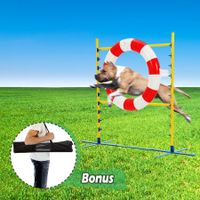 Dog Training Practice Agility Tire Tyre Jump
