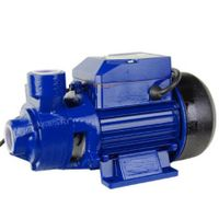 0.5HP QB60 Electric Clean Water Pump Gardening Tools