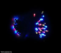 50 LED Solar Fairy Christmas Lights Indoor/Outdoor - 3 Colours