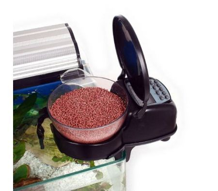 Automatic fish feeder for Best automatic fish feeder